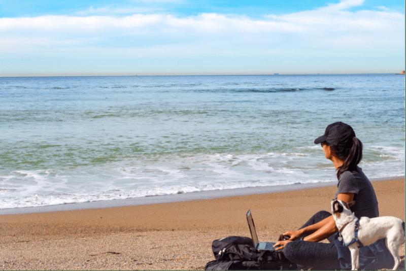 Frau mit Hund am Meer mit offenem Laptop